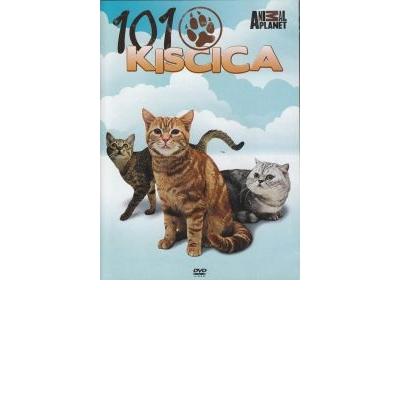 101 Kiscica
