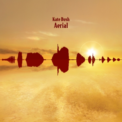 AERIAL (2CD)