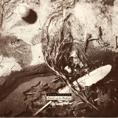 SECRETS OF THE BEEHIVE LP