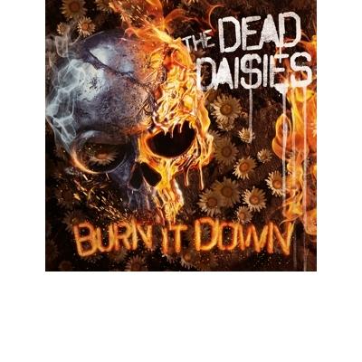 Burn It Down Digi CD