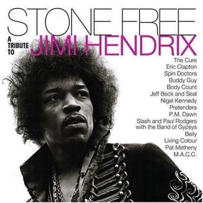 """STONE FREE JIMI HENDRIX TRIBUTE (140 GR 12""""-LTD.)"""