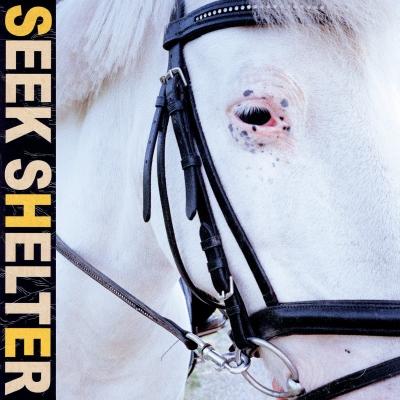 Seek Shelter