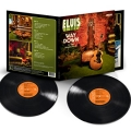Way Down in the Jungle Room [Vinyl 2LP]