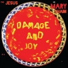 Damage And Joy [Vinyl 2LP]