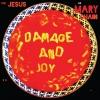 Damage And Joy [Vinyl 2LP]