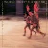 Rhythm of the Saints LP