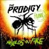 Live - World's On Fire (CD+DVD)