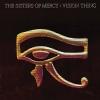 Vision Thing (Vinyl Box Set) 4LP