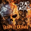 Burn It Down Digi CD