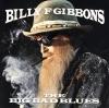 Big Bad Blues