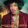 EXPERIENCE HENDRIX: THE BEST OF 2LP