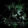 Thrash In Black (+multimedia) CD