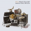 What's Your 20?:Essential tracks 1994-2014 2CD