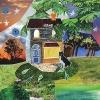 """HOME (7"""" COLOUR LPS)"""